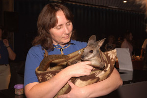 Sue and wallaby2