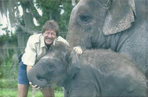 kirtland elephant
